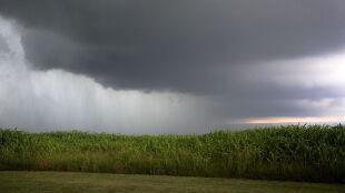 Prognoza pogody na jutro: ciepła noc, w dzień żar z nieba i gwałtowne burze