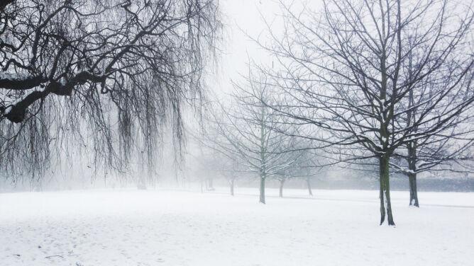 Prognoza pogody na dziś: spadnie śnieg <br />i mocniej powieje. Możliwe zawieje śnieżne